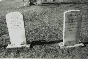 Cyrus & Diana Davis Grave Site, Carrollton, Illinois
